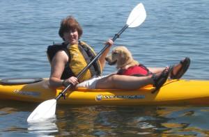 Golden Retriever Puppy in a Kayak
