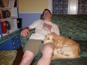 Golden Retriever Puppy Resting